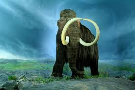 hey-a-mammoth