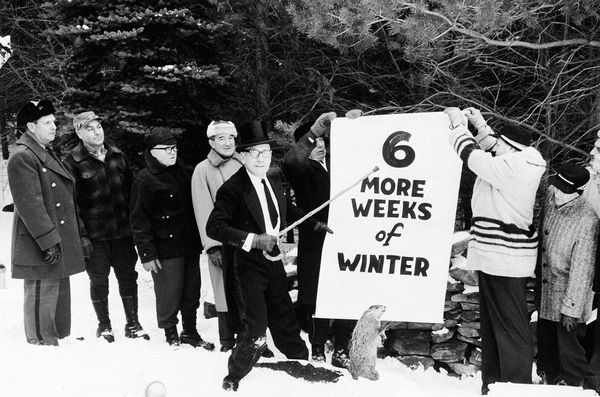 groundhog-day-1961-report_12532_600x450