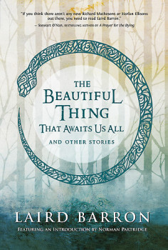 Beutiful Thing that Awaits Us All book cover