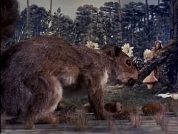 Elizabeth and the squirrel