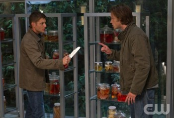 Sam (right) and Dean (left) have yet another brother-to-brother chat, apparently in front of jarred biological specimens. (From a previous episode)