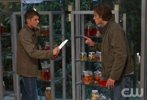 Sam (right) and Dean (left) have yet another brother-to-brother chat, apparently in front of jarred biological specimens.