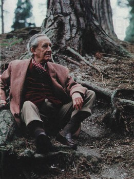 on tolkien interviews reminiscences and other essays Douglas a anderson jrr tolkien: interviews, reminiscences, and other essays (2004) with marjorie j burns essay series curiosities.