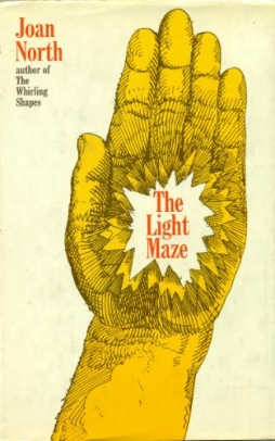 The Light Maze