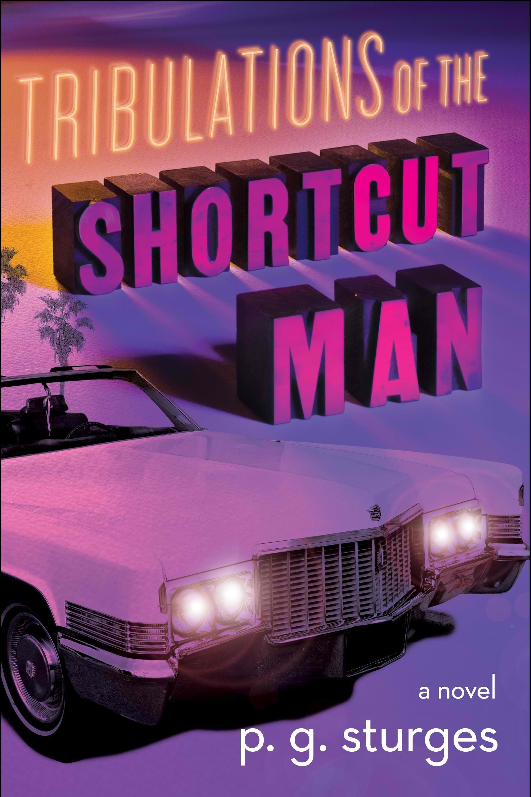 ap-book-review-shortcut-man-17944457jpg