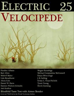 electric-velocipede-25-small