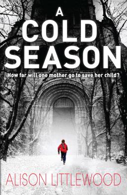 A Cold Season-small