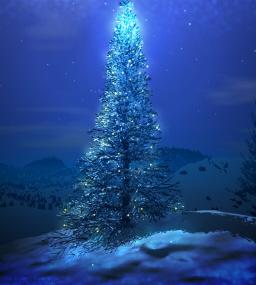 Black Gate Christmas Tree 2013-small