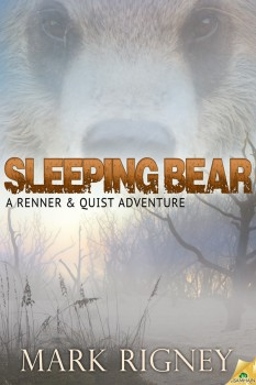 Sleeping Bear cover