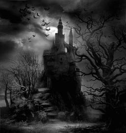 Dark Haunted Woods