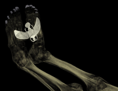 CT scan of the feet of Tayesmutengebtiu, also called Tamut, to show the metal covers on her toenails and the large amulet of the winged scarab beetle Khepri. © Trustees of the British Museum
