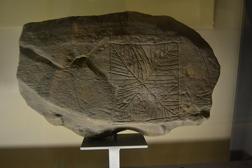 Many carved stones have been found on the islands. The portable ones are now preserved in museums. Sadly, some of those remaining in the countryside have been vandalized.
