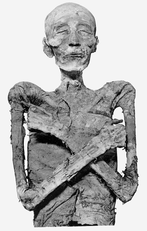 Merneptah_mummy