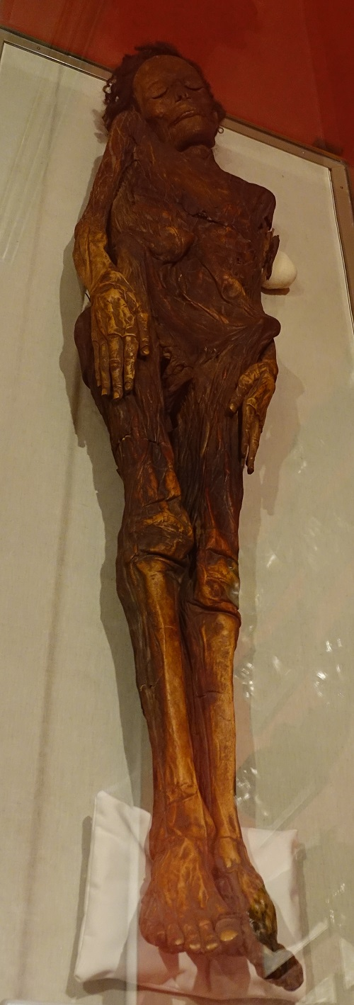Guanche mummy of the Museo Nacional de Antropología (National Museum of Anthropology), Madrid, Spain