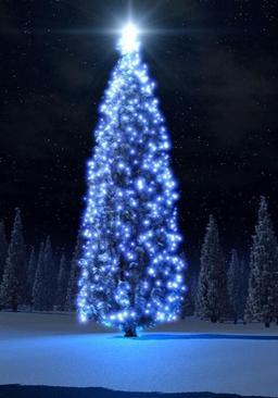 Black Gate Christmas Tree 2015-small
