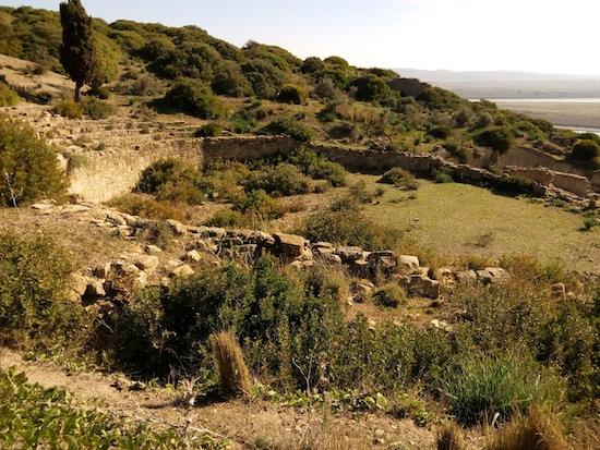 The amphitheater of Lixus. Photo courtesy Almudeana Alonso-Herrero.