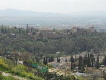 Alhambra whole