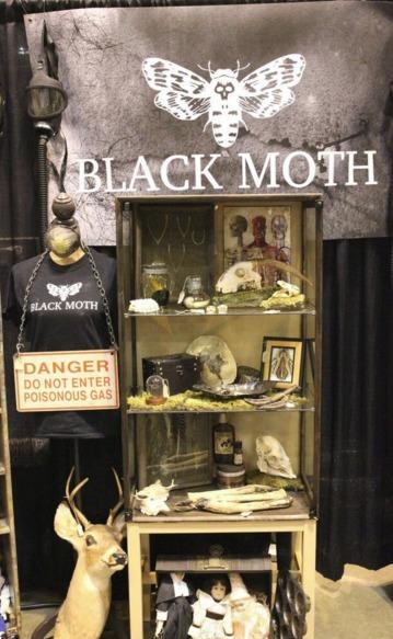 Black Moth