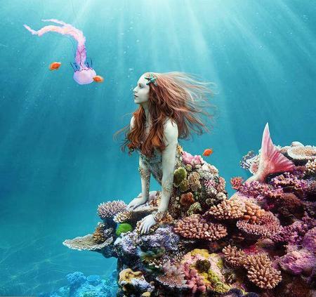 mermaid coral-small