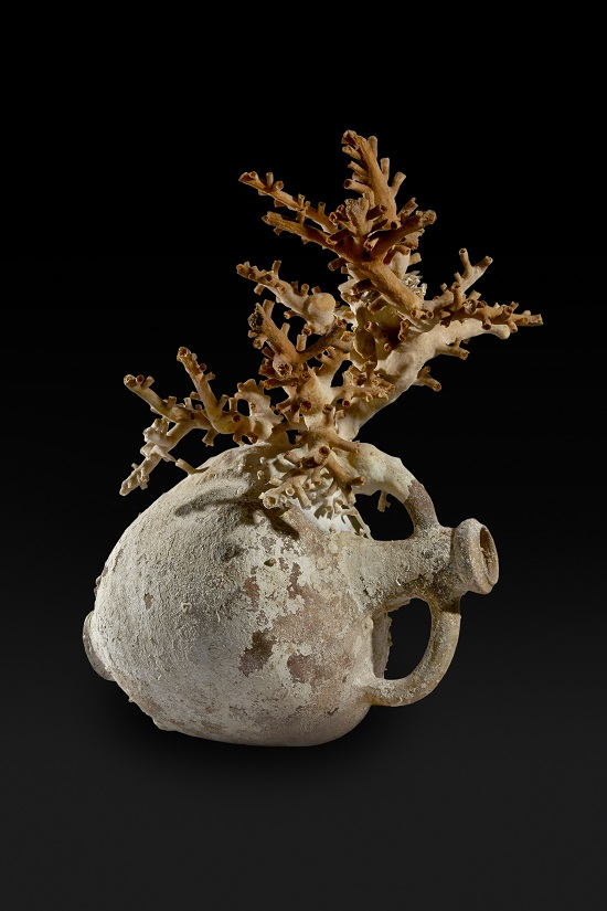 3. Amphora with coral. Lent by Soprintendenza del Mare -® Ashmolean Museum, University of Oxford