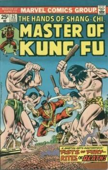 13435-2697-15068-1-master-of-kung-fu