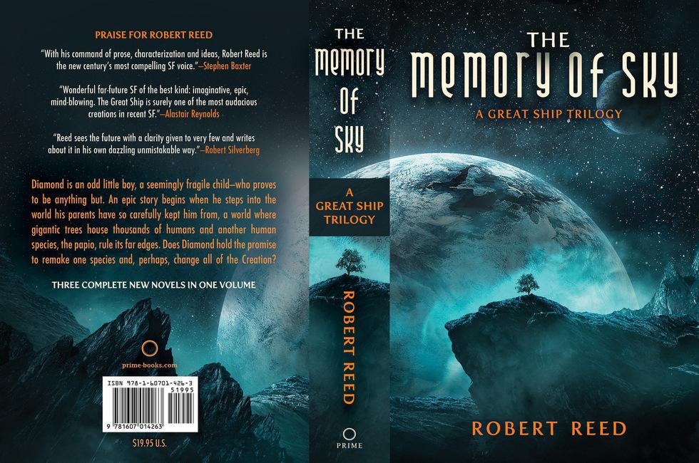 The Memory of Sky wraparound cover