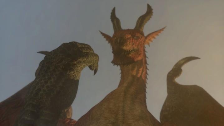 Dragons-Dogma-4-small