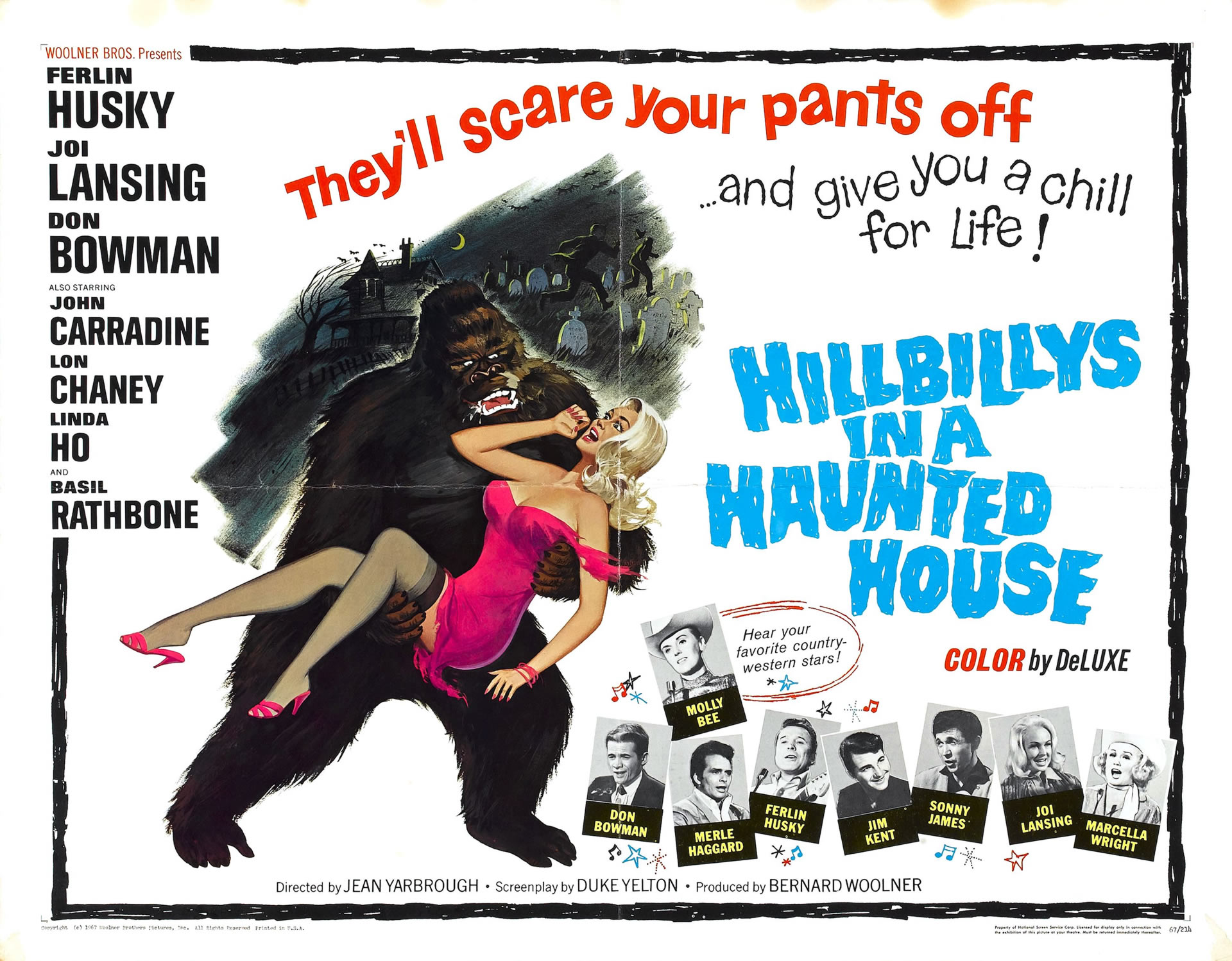 Hillbillies in a Haunted House poster-small