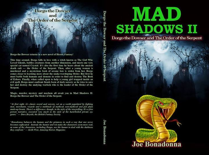 Mad Shadows 2 cover by Erika M. Szabo wrap-small