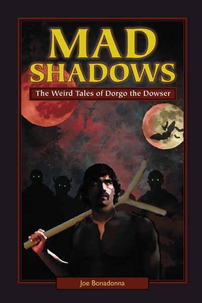 Mad Shadows cover by David M. Stanley-small