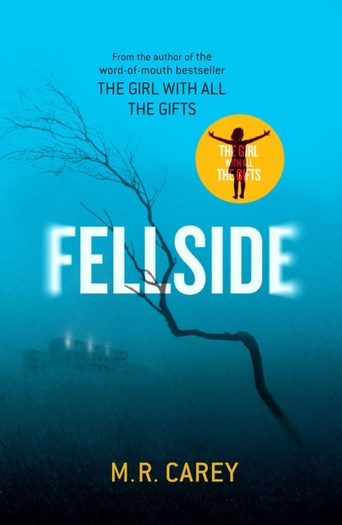 Fellside-by-M-R-Carey-small