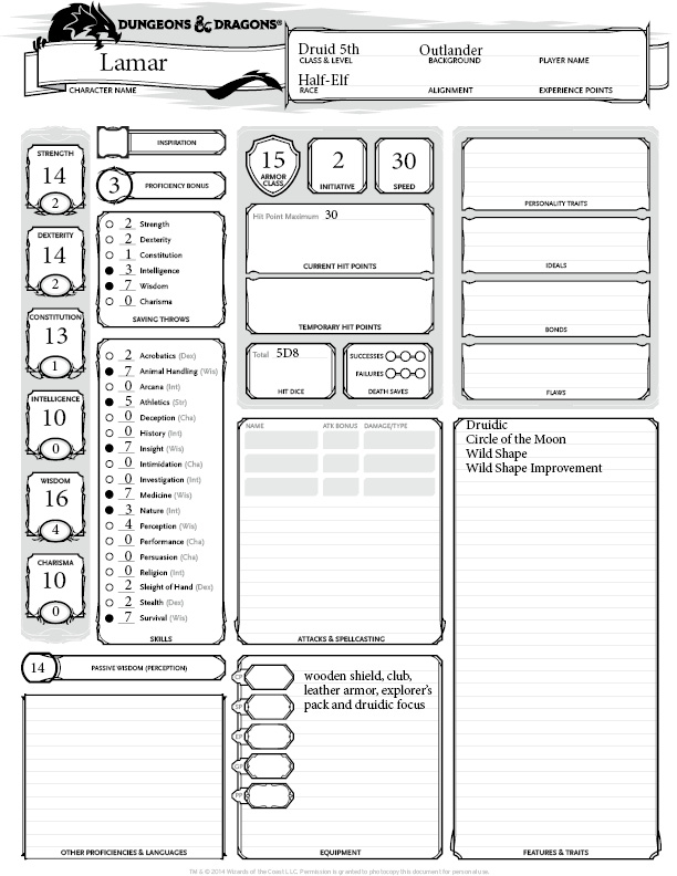 DandD sheet-small