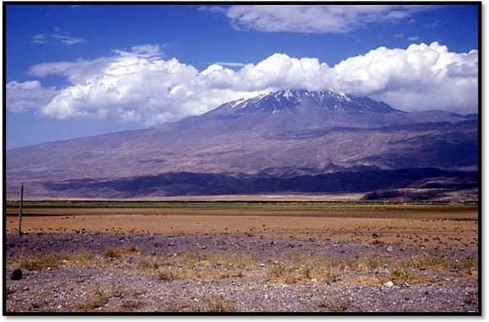 Mount Ararat Goth Chick-small