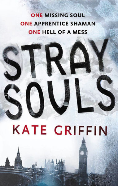 Stray Souls Kate Griffin-small
