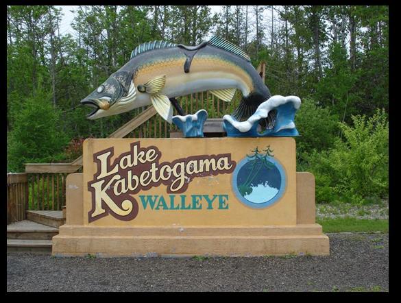 Lake Kabetogama Walleye