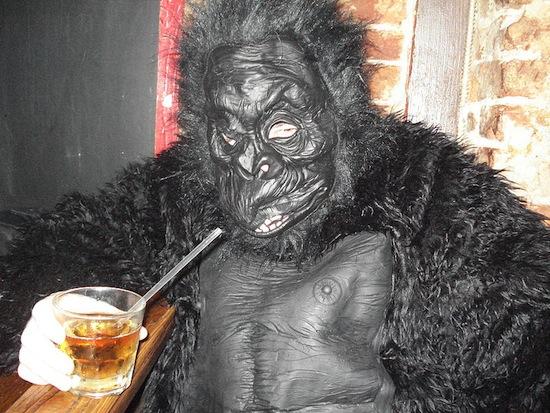 800px-Mardi_Gras_Drinking_Gorilla