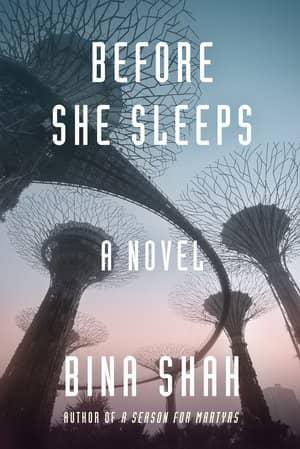 Before She Sleeps-small