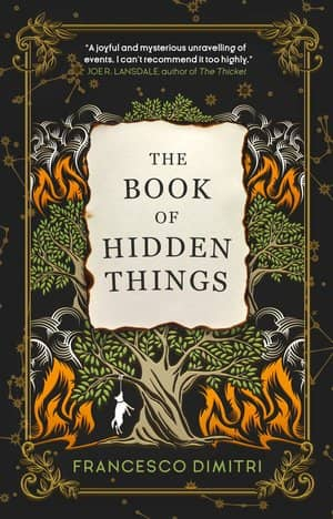 The Book of Hidden Things-small