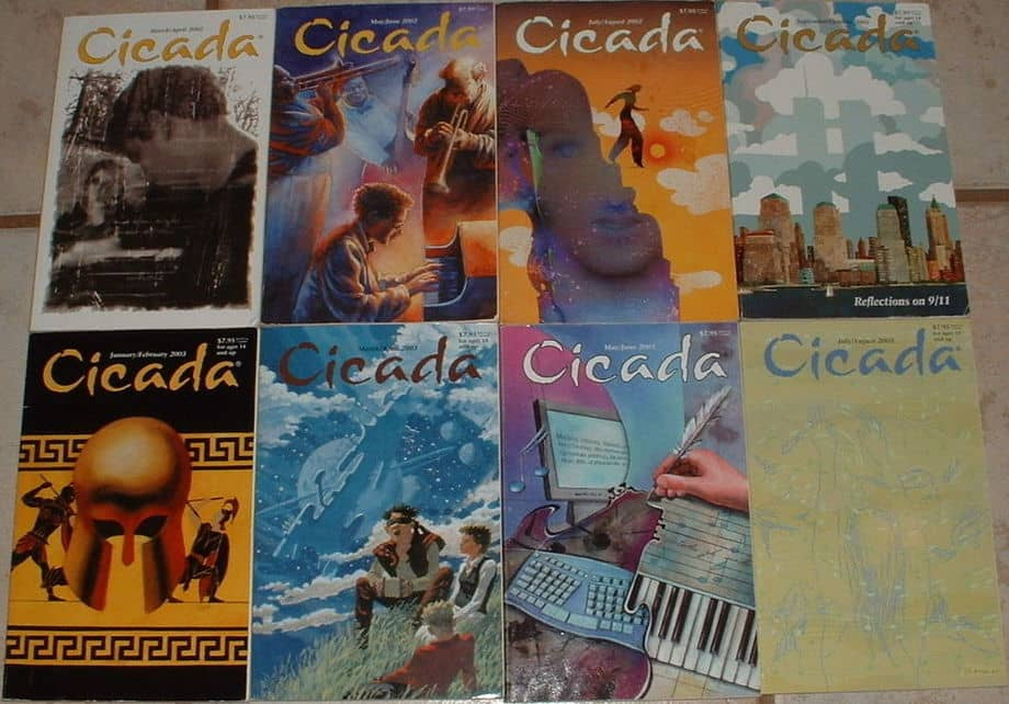 Cicada magazine lot-small