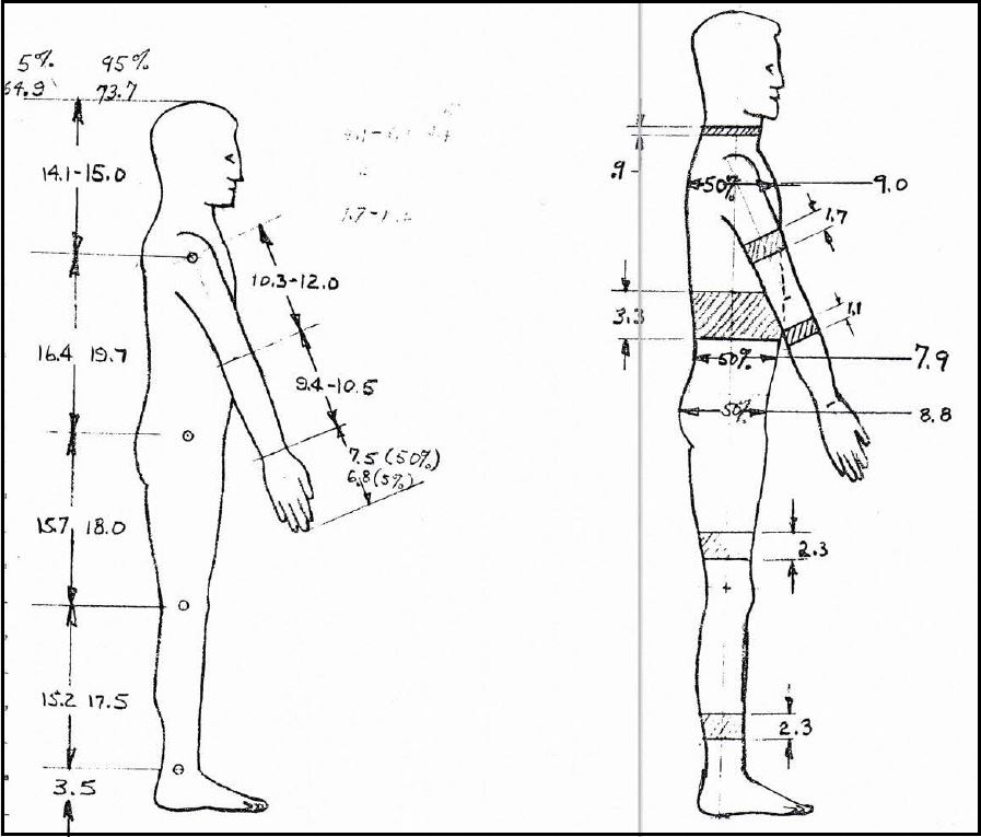 Power Driven Articulated Dummy final report side view illus