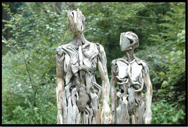 Disturbing Wood 1