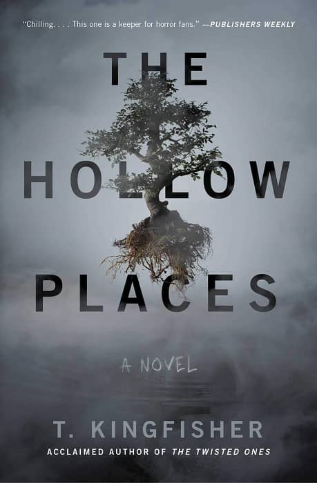 The Hollow Places-small