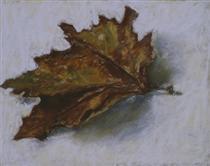 a-dead-leaf-2002.jpg!PinterestSmall